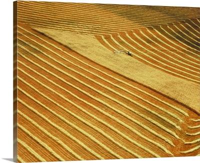 Farmland, Saskatchewan, Canada