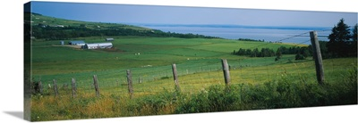 Fence in a field, Charlevoix, Quebec, Canada