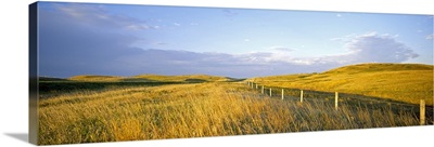 Fence in a field, Standing Rock Indian Reservation, North Dakota