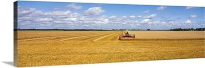 Field Farm MN