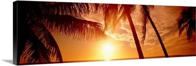 Florida, Fort Meyers, sunset