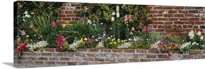 Flower beds along a brick wall, West Jones Street, Savannah, Georgia