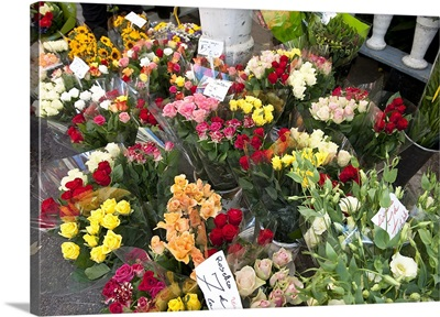 Flowers for sale at a weekly market, Apt, Vaucluse, Provence Alpes Cote dAzur, France