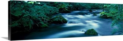 Flowing Stream Aomiri Japan