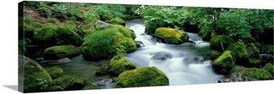 Flowing Stream (Oirase ) Aomiri Japan