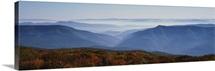 Fog over hills, Dolly Sods Wilderness, Monongahela National Forest, West Virginia