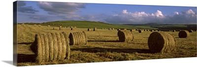 Hay bales in a field, Underberg, KwaZulu Natal, South Africa