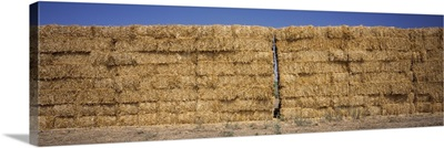 Hay stacks in a field, California,
