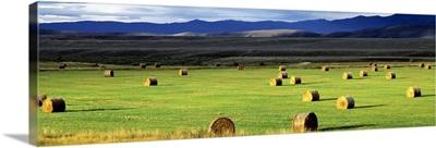 Haystacks Field Jackson County CO