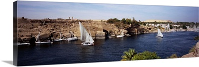 High angle view of a sailboat in a river, Nile River, Aswan, Egypt