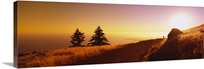 Hiker on a road, Mt Tamalpais, Marin County, California