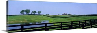 Horse Farm KY