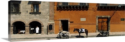 Horse standing between two motorcycles parked on a road, San Miguel De Allende, Guanajuato, Mexico