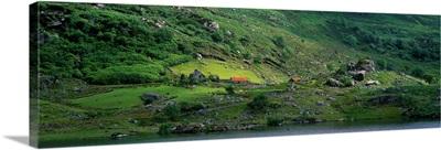 Irish countryside Killarney National Park Ireland