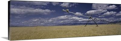 Irrigation Wheat Field MT