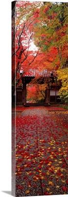 (Komyoji Temple ) Kyoto Japan