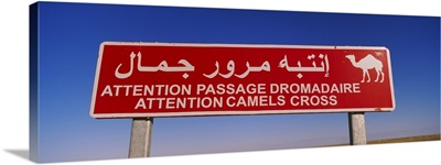 Low angle view of a camel crossing signboard, Douz, Tunisia
