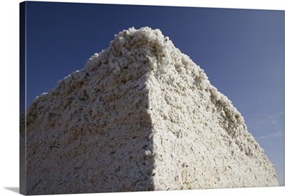Low angle view of a heap of cotton, Wellington, Texas