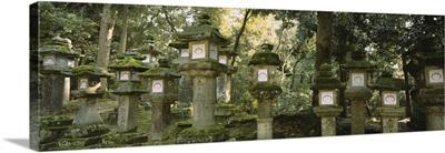 Low angle view of stone lanterns, Kasuga Taisha, Nara, Japan