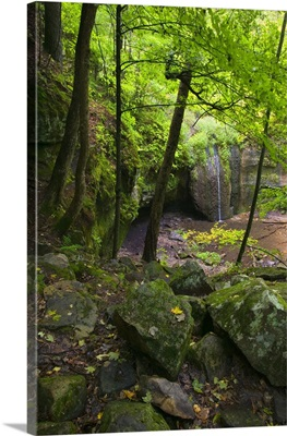 Mossy boulders and lush foliage beside Stephens Falls, Governor Dodge State Park, Wisconsin