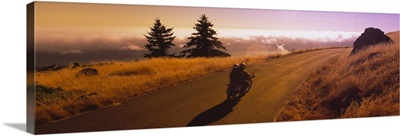 Motorcycle moving on a road, Mt Tamalpais, Marin County, California