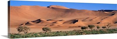 Namib Desert National Park Namibia Africa