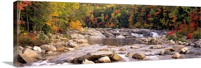 New Hampshire, White Mountains National Forest, River flowing through the wilderness