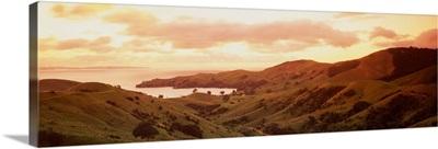 New Zealand, Cormandle Peninsula