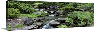 Ohio, Columbus, Inniswood Metro Gardens, River flowing through a forest