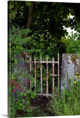 Old Gateway, Ardmore, County Waterford, Ireland