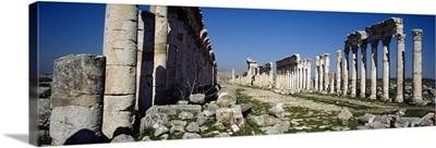 Old ruins on a landscape, Cardo Maximus, Apamea, Syria
