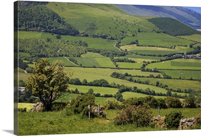 Pastoral Scene Below the Comeragh Mountains, County Waterford, Ireland