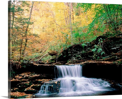 Pennsylvania, Benton, Ricketts Glen State Park, Waterfalls at Glen Natural Area