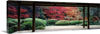 Plants and maple trees viewed from a temple, Shisendo Temple, Kyoto City, Kyoto Prefecture, Japan