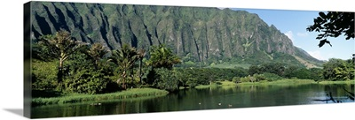 Pond in a garden, Hoomaluhia Botanical Garden, Kaneohe, Oahu, Hawaii