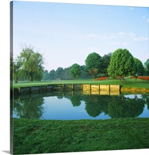 Pond in a golf course, Westwood Country Club, Vienna, Fairfax County, Virginia