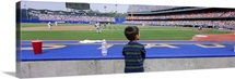 Rear view of a boy watching a baseball match, Dodgers vs. Yankees, Dodger Stadium, City of Los Angeles, California