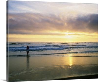 Rear View Of Woman On Beach Looking Toward Horizon