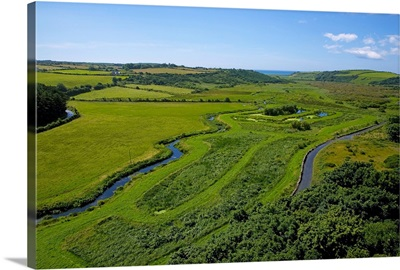 Reed Beds, Near Annestown, The Copper Coast, County Waterford, Ireland