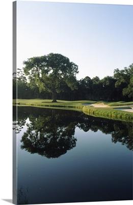 Reflection of trees in a lake, Kiawah Island Golf Resort, Kiawah Island, Charleston County, South Carolina