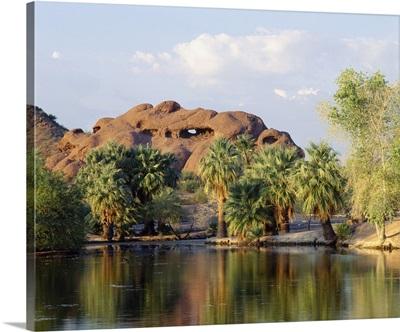 Reflection of trees in a park, Papago Park, Phoenix, Maricopa County, Arizona