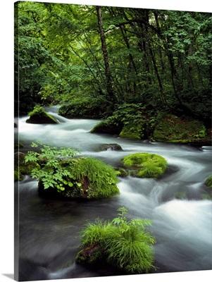 River Aomori Japan