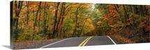 Road passing through a forest, U.S. Route 41, Keweenaw County, Keweenaw Peninsula, Michigan