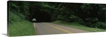 Road passing through a tunnel, Blue Ridge Parkway, North Carolina