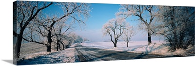 Road passing through winter fields, Illinois,