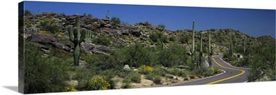 Road Phoenix AZ