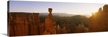Rock formations in a canyon, Thors Hammer, Bryce Canyon National Park, Utah