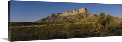 Rock formations on a landscape, Guadalupe Mountains National Park, Texas