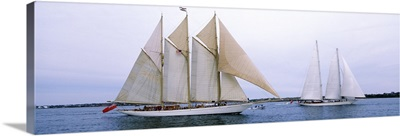 Sailboats in the sea, Narragansett Bay, Newport, Newport County, Rhode Island