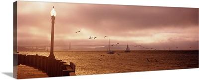 Sailboats in the sea, San Francisco Bay, Golden Gate Bridge, San Francisco, California